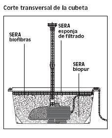 El agua la fuente de la vida tiendanimal for Filtros para estanques de jardin