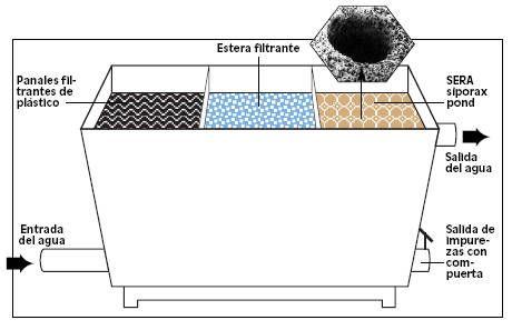 El agua la fuente de la vida tiendanimal for Filtro casero para estanque