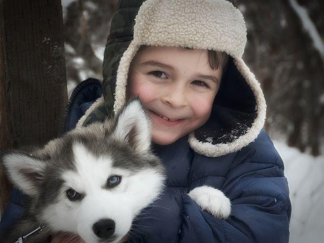 Dudas sobre la ley de Perros Potencialmente Peligrosos