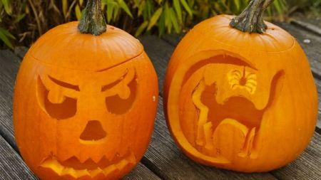 Halloween y nuestras mascotas