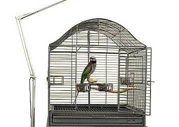 ¿Son necesarias las lámparas UVB/UVA para aves?