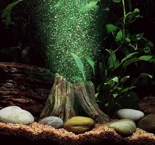 decorar-acuario-sin-plantas