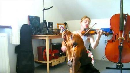 Perro y compañera compartiendo pasión