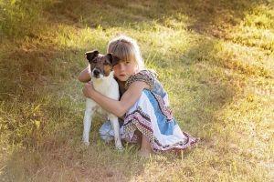 Los perros entienden los sentimientos de los humanos