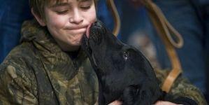 Cómo construir un buen vínculo con tu perro