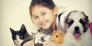 Películas que todo amante de los animales debería ver