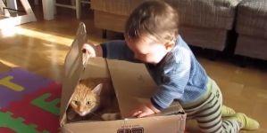 ¡Niños y animales!