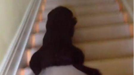 ¿Existe una manera más original de bajar unas escaleras?