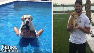 Los perros de futbolistas famosos