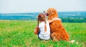 Nuevas pipetas para perros Frontline Tri-Act