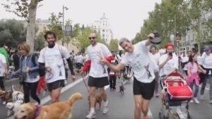 Perrotón Madrid 2015