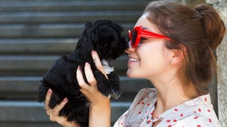 5 Razones por las que un animal te hará más feliz