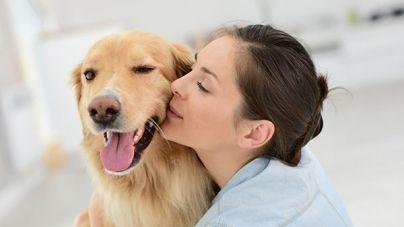 ¿Sabías que los perros detectan el cáncer?