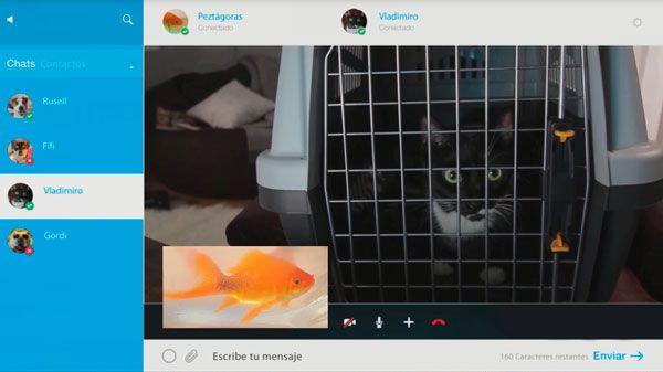 Visita al veterinario - QMDC 1x07