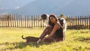 Cuida a tu mascota en verano: Refréscala