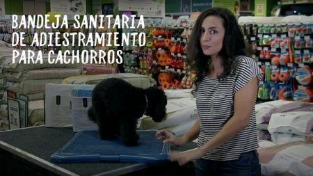 Análisis: Bandeja de entrenamiento para cachorros TK-Pet