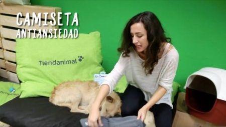Análisis: Camiseta antiansiedad para perros