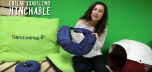 collar-inflable-perros-gatos
