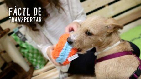Análisis: Juguetes para cachorros