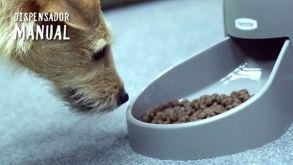Análisis: Comedero automático de PetMate