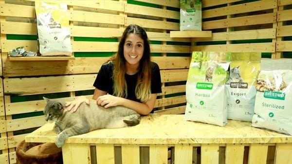 Análisis: Pienso para gatos con necesidades especiales Breed Up