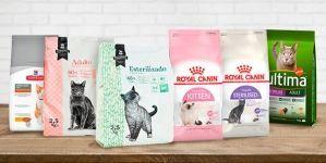 Marcas de comida para gatos