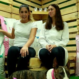 Análisis: Alimento medicado para perros Criadores Dietetic