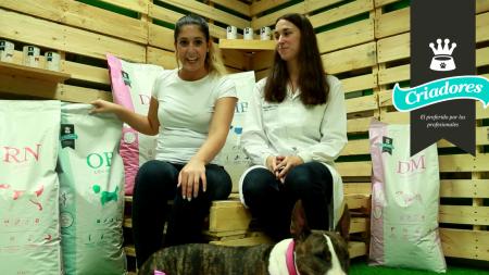 Análisis: Alimento medicado Criadores Dietetic para perros