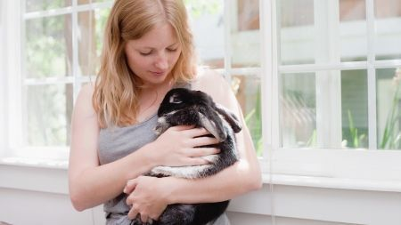 Vacunas para conejos