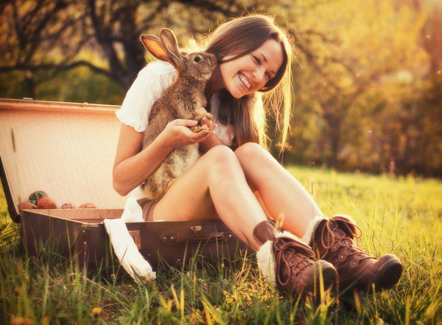 deberia-castrar-a-mi-conejo