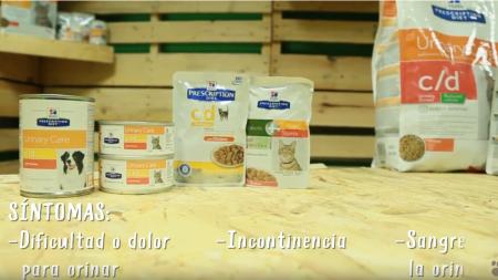 Análisis: Alimentación Hill's para la salud urinaria de perros y gatos