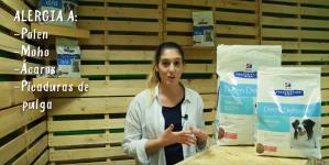 Análisis: Alimentación Hill's para el cuidado de la piel de perros y gatos