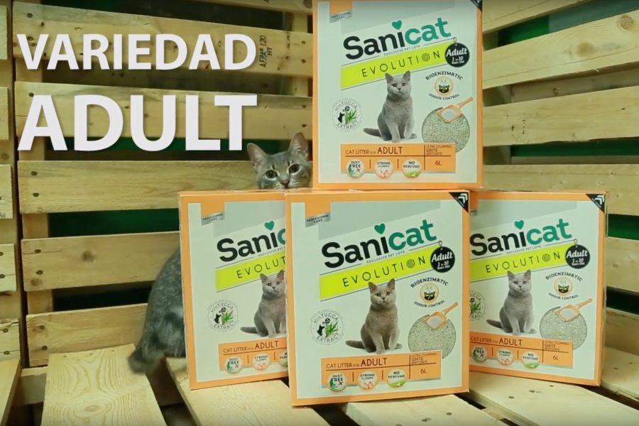 Sanicat Evolution arena para gatos