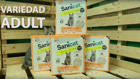 Análisis: Arena para gatos Sanicat Evolution