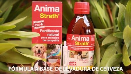 Anima-Strath suplemento nutricional fortificante