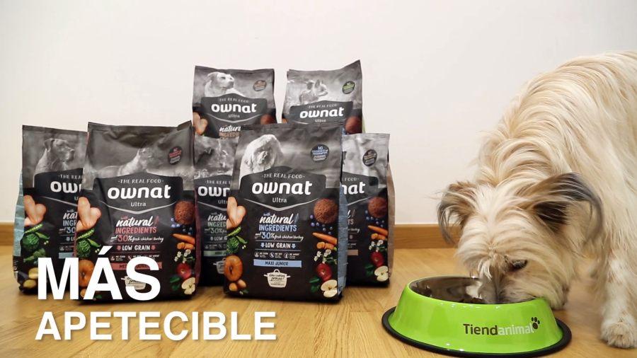 Ownat-ultra-alimentacion-perros