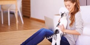 Qué hacer para que nuestro gato no arañe el sofá