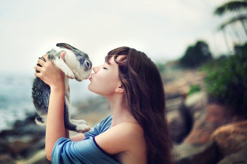como-criar-conejos-recien-nacidos