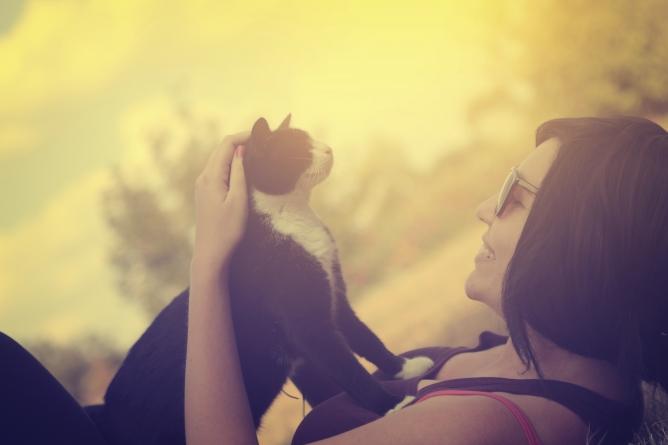 ¿Qué debo tener en cuenta a la hora de adoptar un gato?