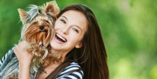 El Yorkshire Terrier, ¿cómo cuidarlo?