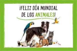 dia-mundial-de-los-animales