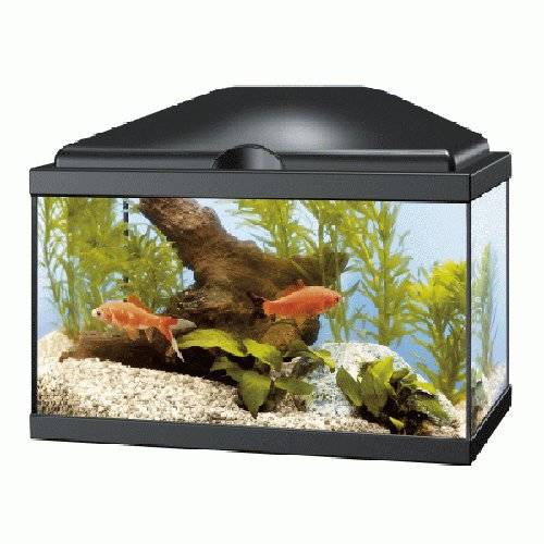 Acuario Ciano Aqua 20 light negro
