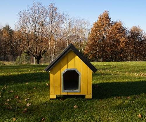 caseta alpine amarilla yellow dog house perro technical pet