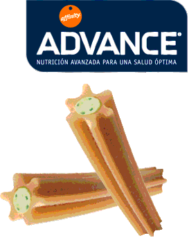 advance dental care stick para perros