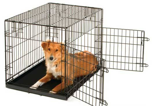 Cage with 2 doors