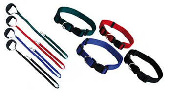 Freedog  collar y correa de nylon basic