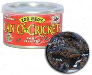ZOOMED can o´crickets mini grillos