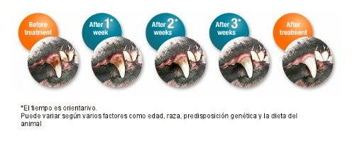 Gel higiene dental natural antisarro y mal aliento perros y gatos