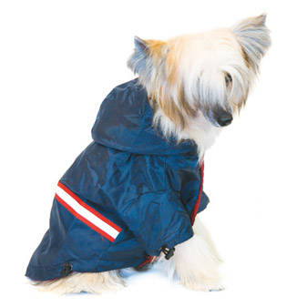 clothes for dogs Blue raincoat<p>