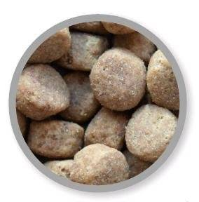 Specific adult large breed croqueta